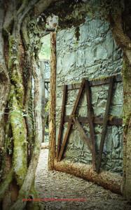 Entrance to Zombie maze